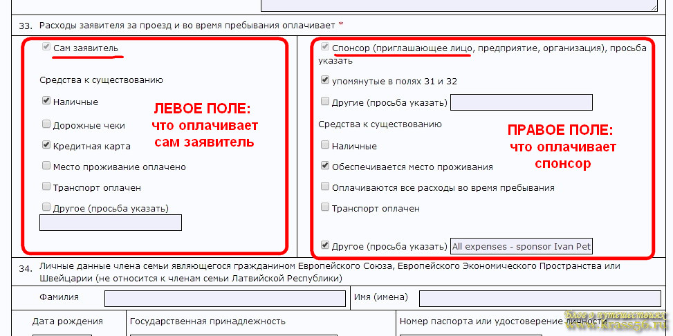Адрес виза метрик
